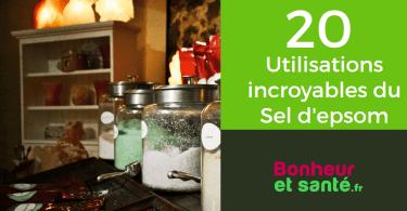 sel-epsom-20-utilisations