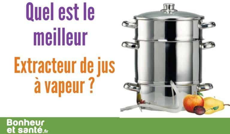 Quel est le meilleur extracteur de jus vapeur?