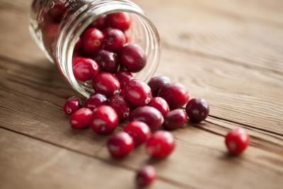 Canneberge-fruits