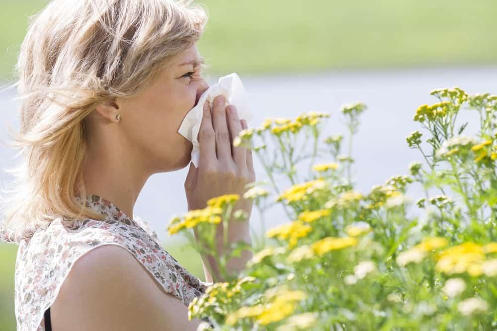 allergie-miel