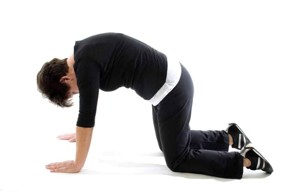 Position chat et vache -douleur bas du dos