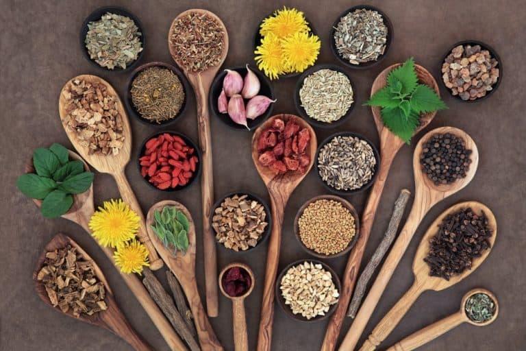 Nettoyage du foie:  9 solutions naturelles pour le purifier