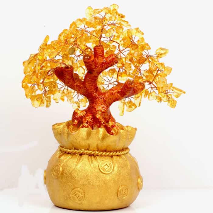 arbre-citrine