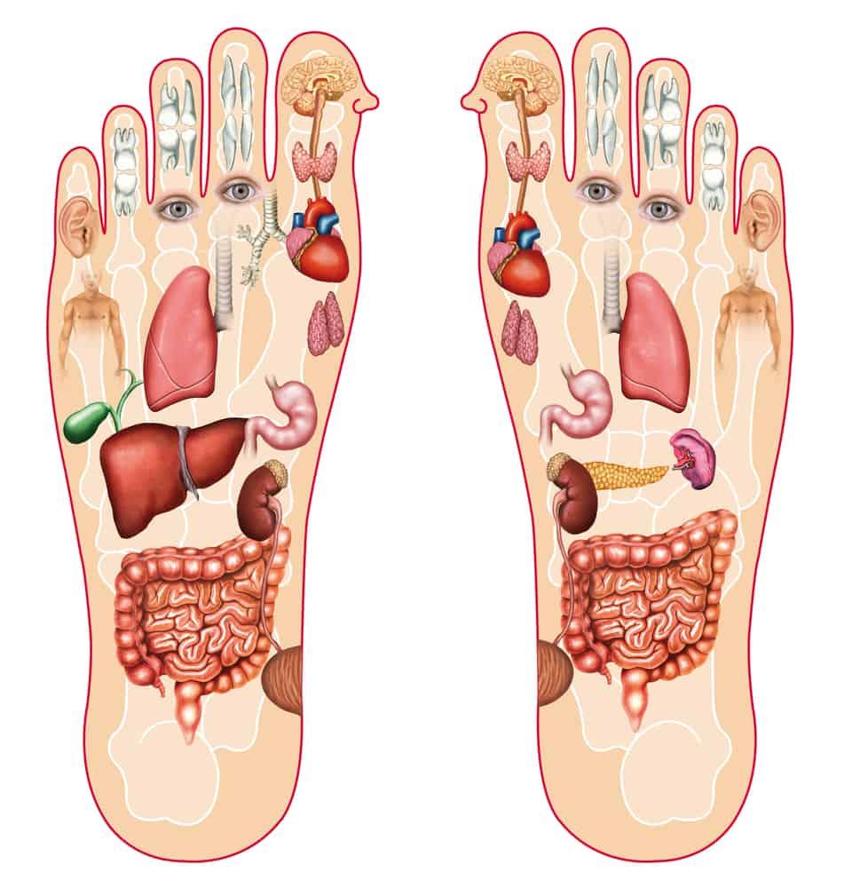 reflexologie-pieds