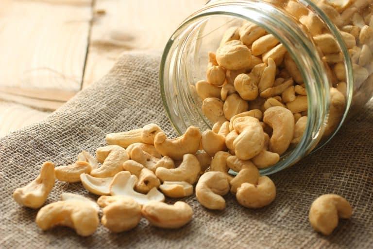 La noix de cajou: une petite noix bourrée de qualités nutritionnelles